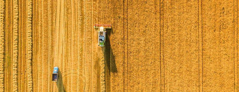 Cognitive Pilot diseña sistema de conducción autónoma para cosechadoras